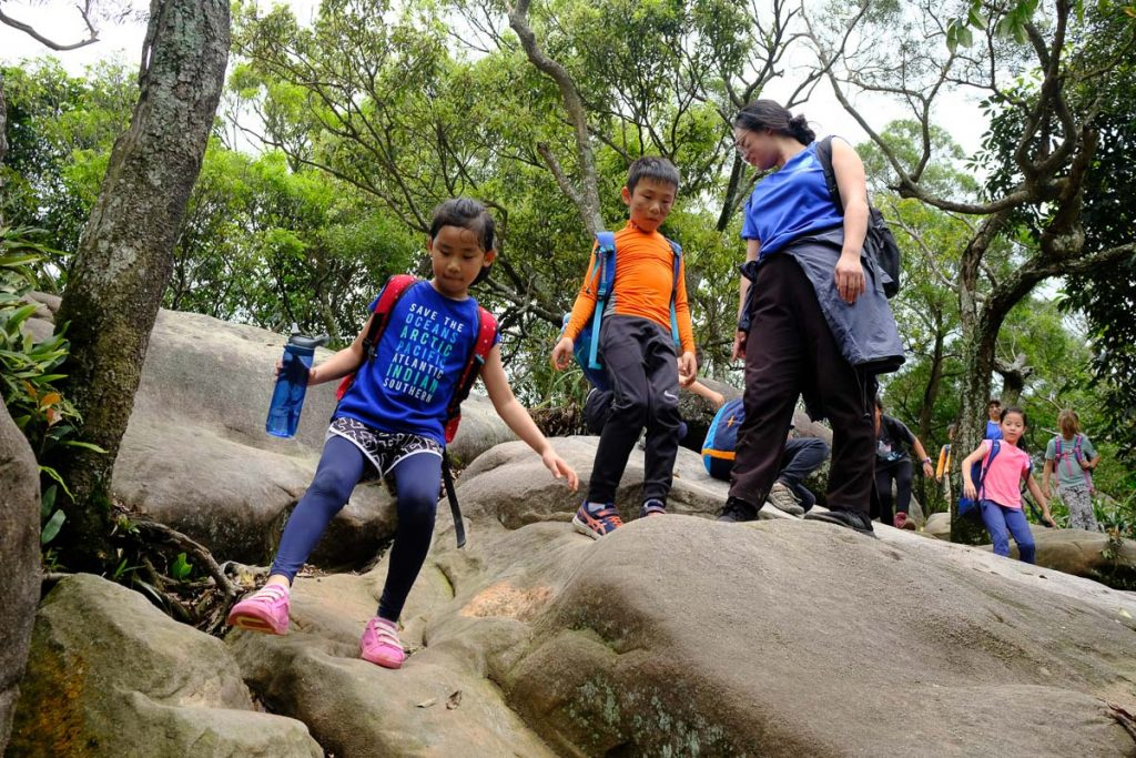 Jungle Hike save the oceans
