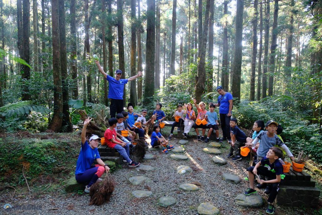 Forest bathing and scavenging ecology insights