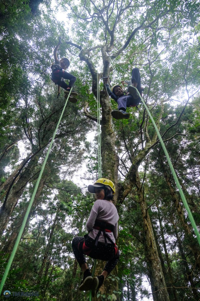 Tree Climbing in Taiwan. Experiential learning